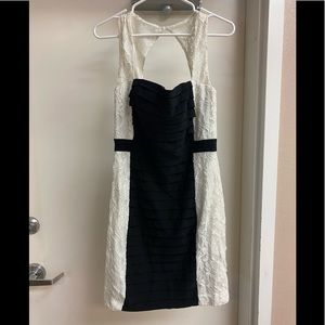 Black and white lace colorblock dress